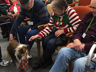 Christmas music and pet therapy for seniors